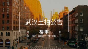 楼事土拍预告|武汉7月首场土拍来袭!明日蔡甸区一宗商服地3340万元起拍