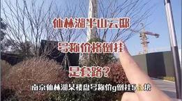 南京仙林湖半山云邸号称价格倒挂,是真倒挂还是玩套路?