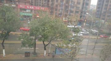 """利奇马""""来了,济南市教育局下达紧急停课令!"""