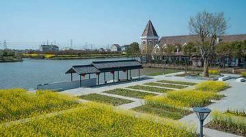 漕泾郊野公园启动部分核心区建设,力争2022年开园迎客!