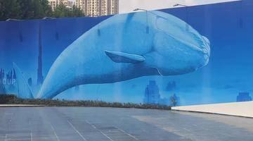 探秘 | 巨型鲸鱼惊现金成府!金隅第三子火热启动中