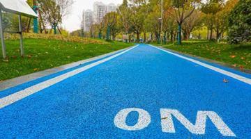 健身步道、亲水景观……松江这座3.3万平方米的公园改造完成