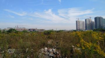 """大江东超249亩""""巨无霸""""地块挂牌!国家级新区也即将诞生……"""
