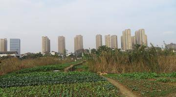 楼事推荐|滨江明珠城三期地块11月竞拍,起拍价5.3亿!